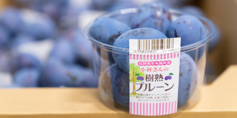 野菜果物の生産・商品開発事業